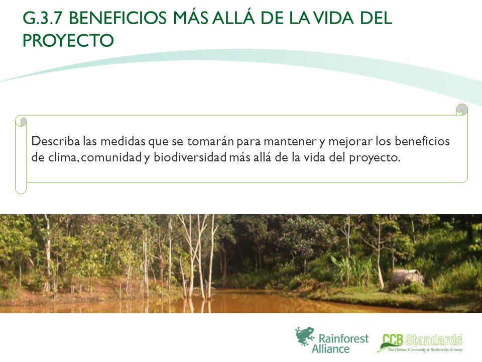 Describa las medidas que se tomarán para mantener y mejorar los beneficios de clima, comunidad y biodiversidad más allá de la vida del proyecto.