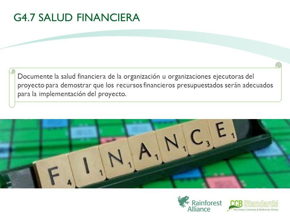 Documente la salud financiera de la organización u organizaciones ejecutoras del proyecto para demostrar que los recursos financieros presupuestados serán adecuados para la implementación del proyecto.
