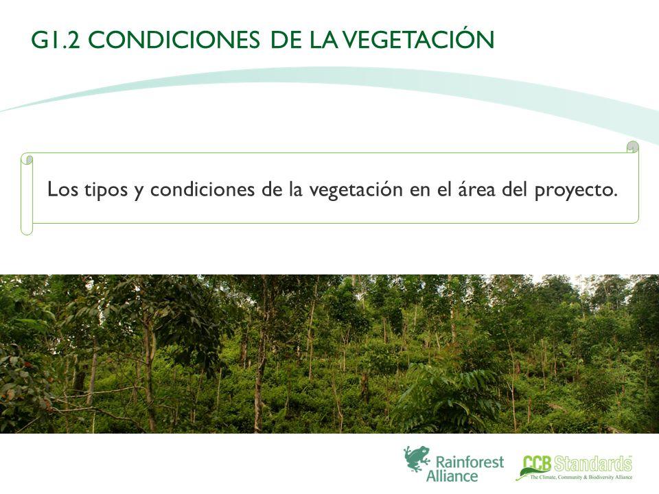 Los tipos y condiciones de la vegetación en el área del proyecto. G1.2 CONDICIONES DE LA VEGETACIÓN