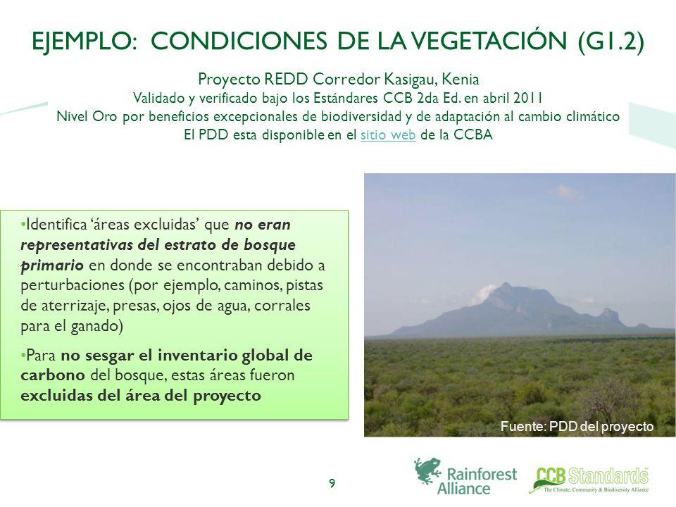 9 EJEMPLO: CONDICIONES DE LA VEGETACIÓN (G1.2) Proyecto REDD Corredor Kasigau, Kenia Validado y verificado bajo los Estándares CCB 2da Ed.