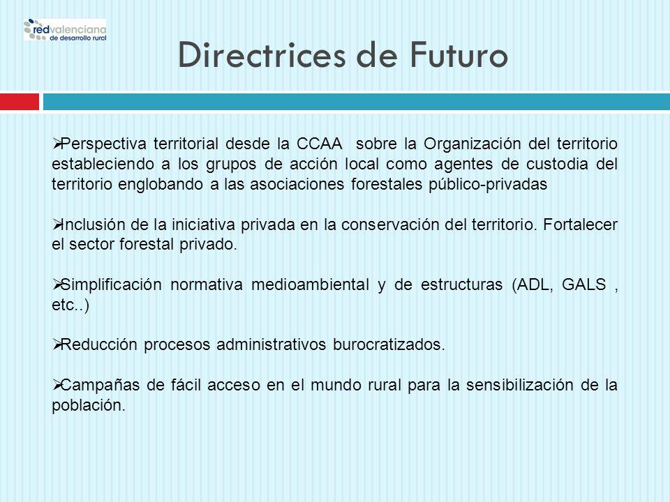 Directrices de Futuro Perspectiva territorial desde la CCAA sobre la Organización del territorio estableciendo a los grupos de acción local como agent