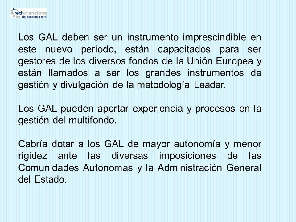 Los GAL deben ser un instrumento imprescindible en este nuevo periodo, están capacitados para ser gestores de los diversos fondos de la Unión Europea