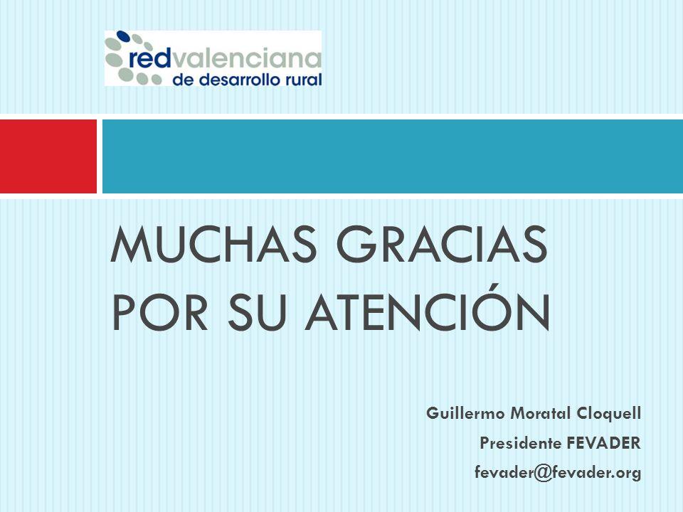 MUCHAS GRACIAS POR SU ATENCIÓN Guillermo Moratal Cloquell Presidente FEVADER fevader@fevader.org