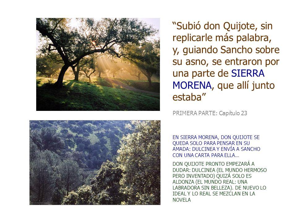 Subió don Quijote, sin replicarle más palabra, y, guiando Sancho sobre su asno, se entraron por una parte de SIERRA MORENA, que allí junto estaba PRIM