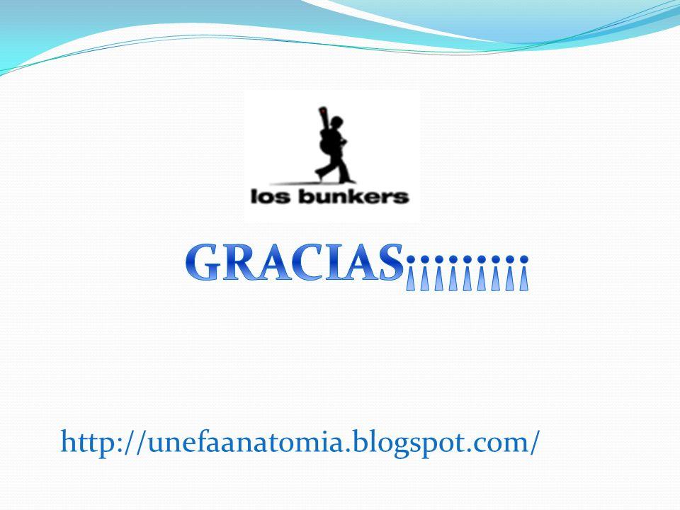 http://unefaanatomia.blogspot.com/