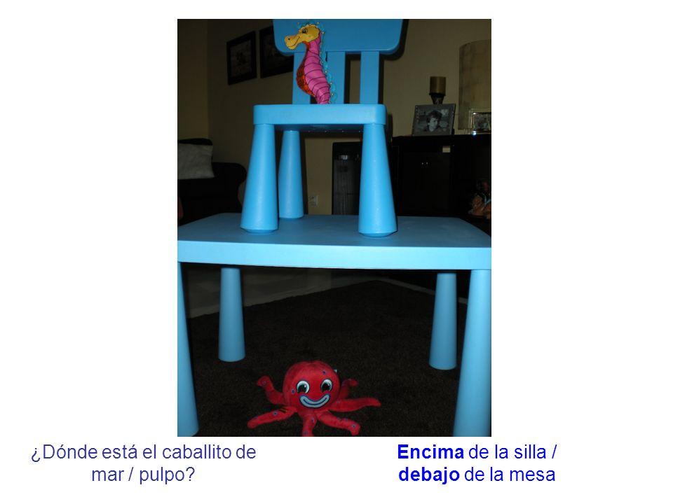 ¿Dónde está el caballito de mar / pulpo? Encima de la silla / debajo de la mesa