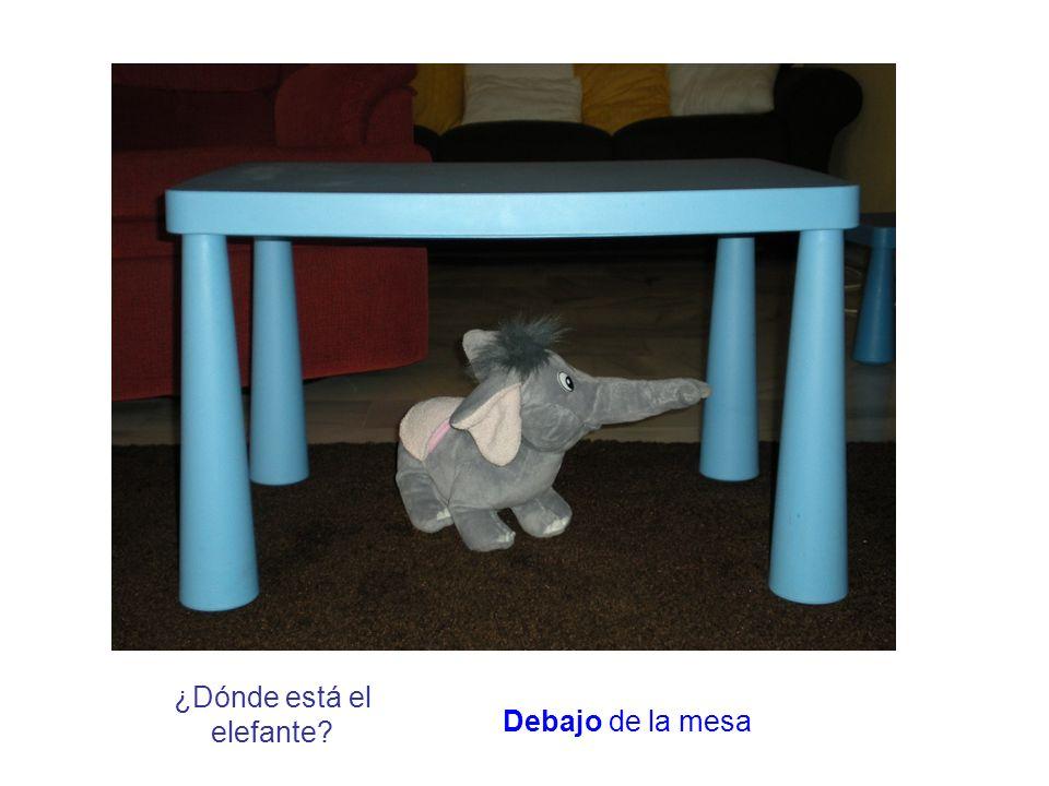 ¿Dónde está el elefante? Debajo de la mesa