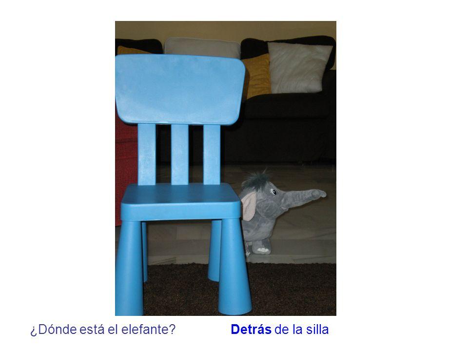 ¿Dónde está el elefante?Detrás de la silla