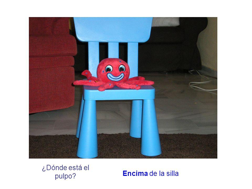 ¿Dónde está el pulpo? Encima de la silla