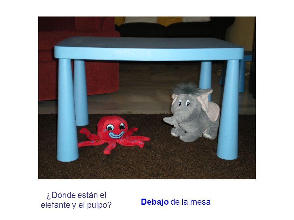 ¿Dónde está el elefante / pulpo? Encima / debajo de la silla