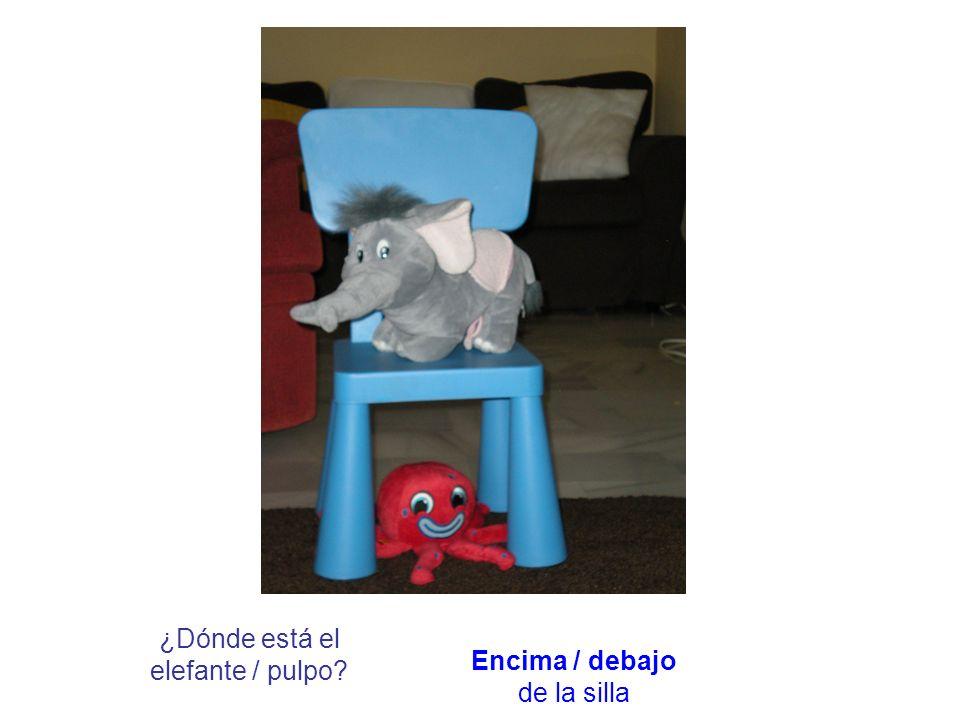 ¿Dónde está el elefante / pulpo?Detrás / delante de la silla