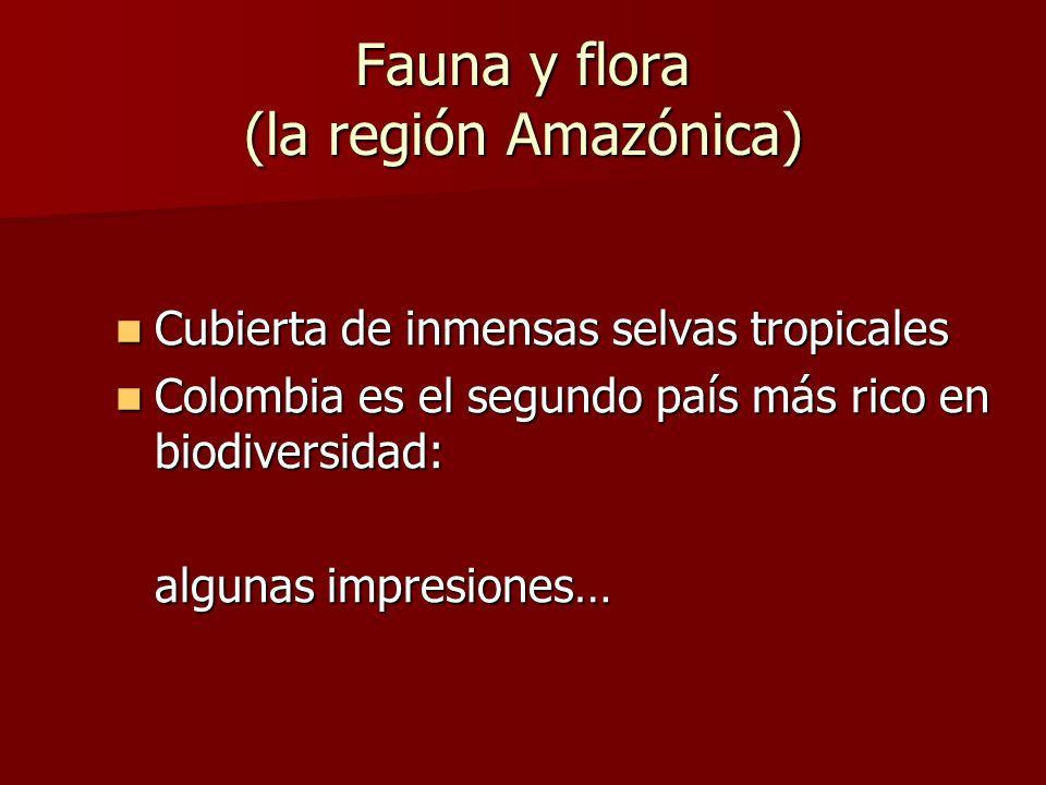 Fauna y flora (la región Amazónica) Cubierta de inmensas selvas tropicales Cubierta de inmensas selvas tropicales Colombia es el segundo país más rico en biodiversidad: Colombia es el segundo país más rico en biodiversidad: algunas impresiones…