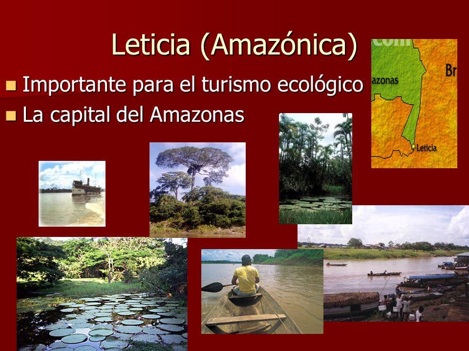 Leticia (Amazónica) Importante para el turismo ecológico Importante para el turismo ecológico La capital del Amazonas La capital del Amazonas