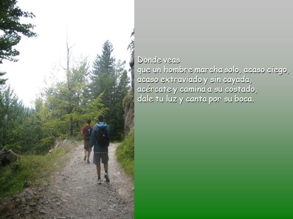 Donde veas que un hombre marcha solo, acaso ciego, acaso extraviado y sin cayada, acércate y camina a su costado, dale tu luz y canta por su boca.