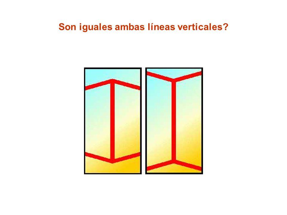 Son iguales ambas líneas verticales?