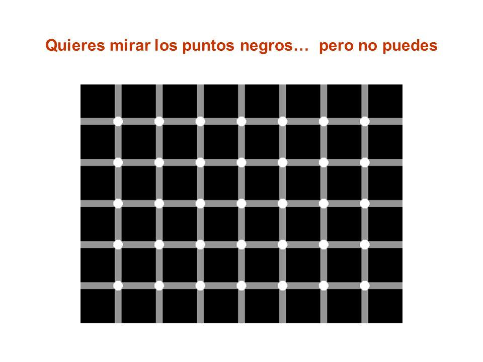 Quieres mirar los puntos negros… pero no puedes