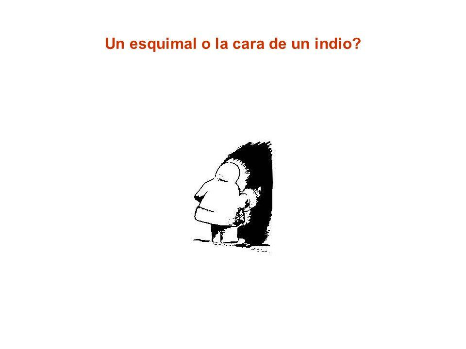 Un esquimal o la cara de un indio?