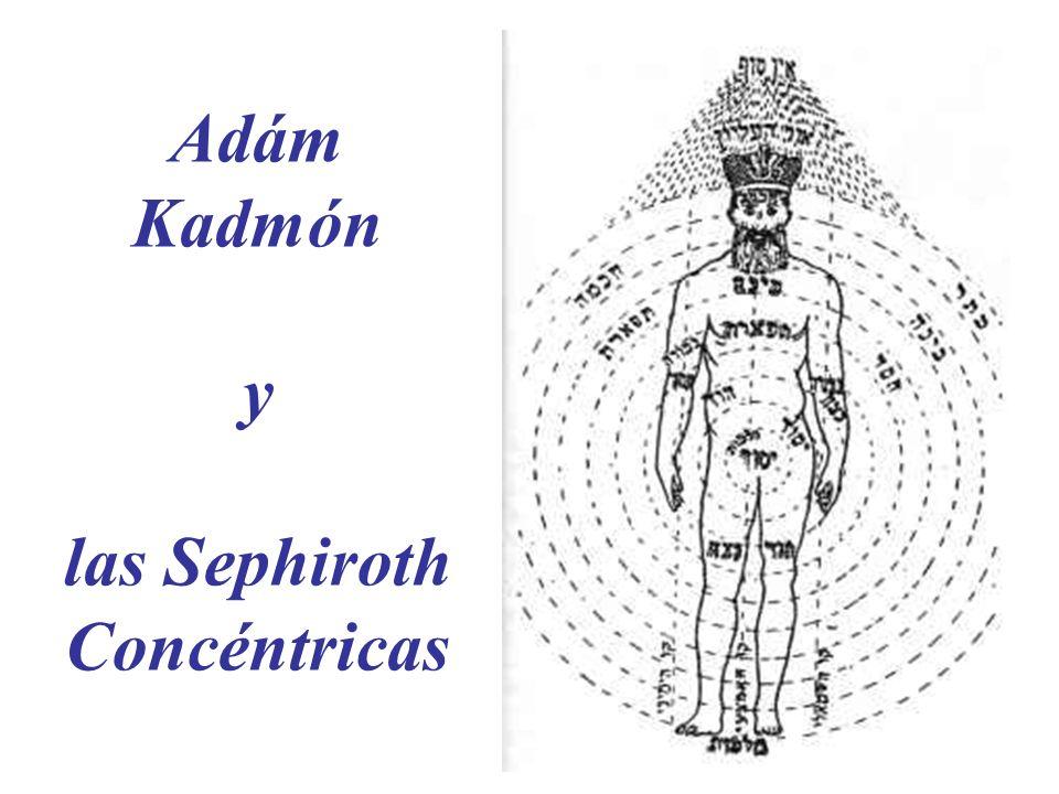 Adám Kadmón y las Sephiroth Concéntricas