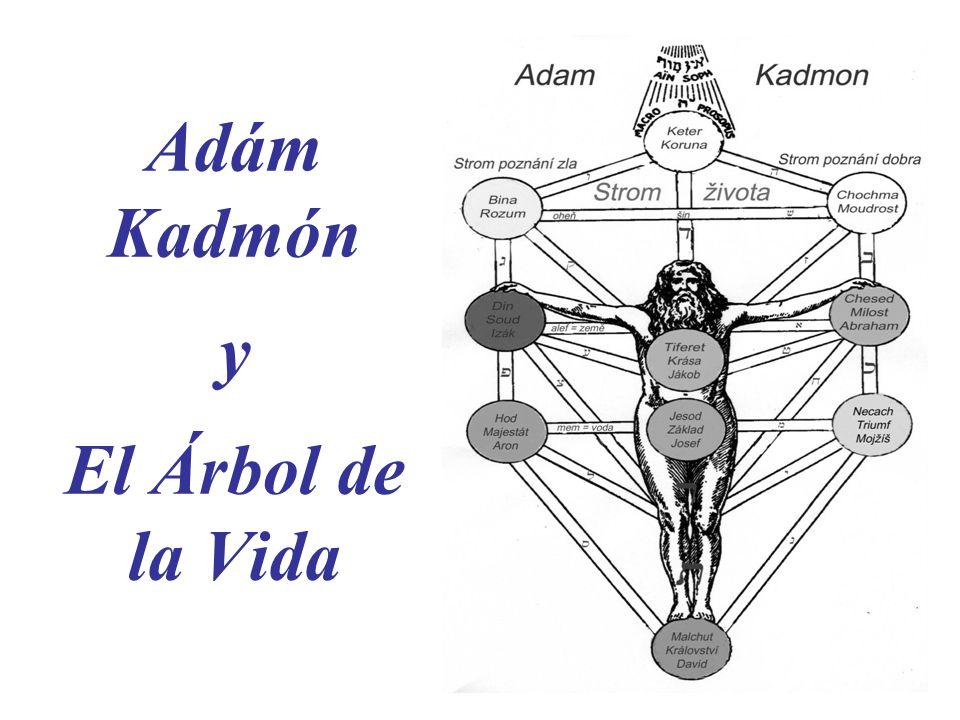 Adám Kadmón y El Árbol de la Vida