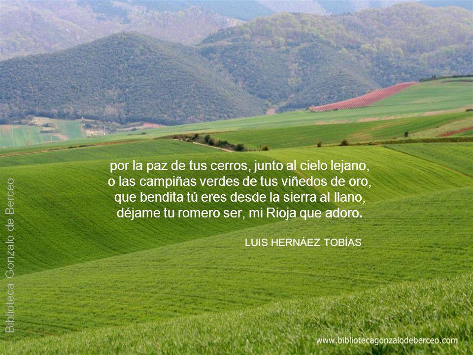 por la paz de tus cerros, junto al cielo lejano, o las campiñas verdes de tus viñedos de oro, que bendita tú eres desde la sierra al llano, déjame tu romero ser, mi Rioja que adoro.