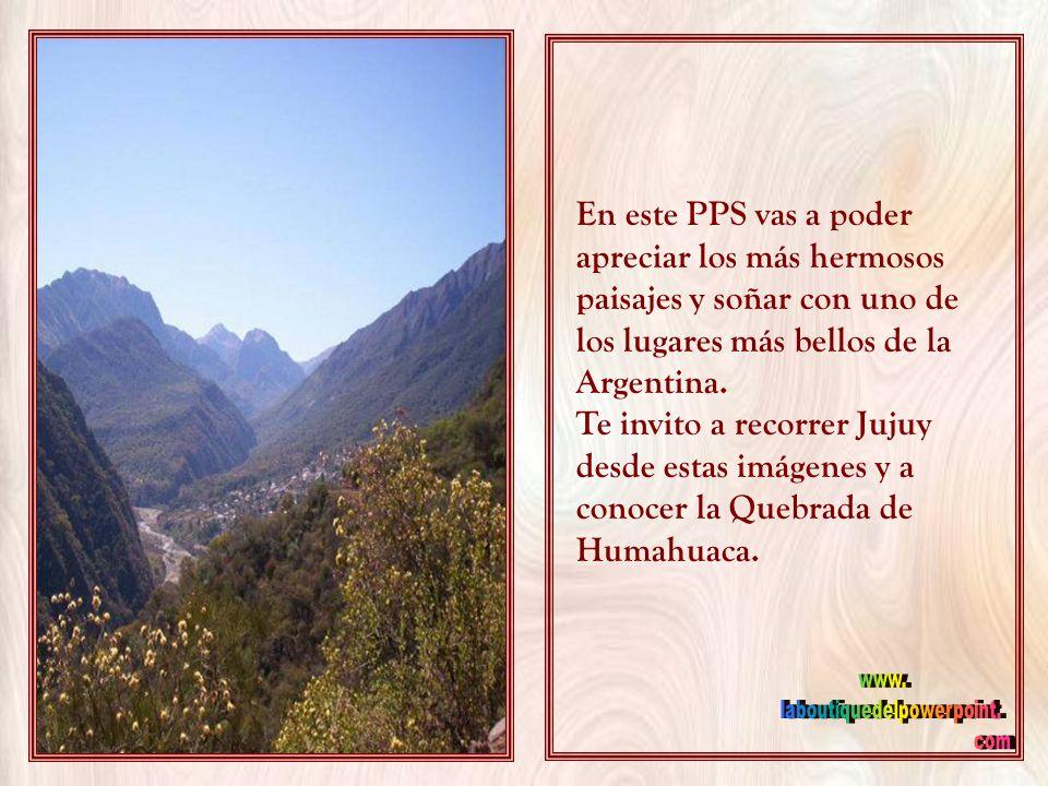 En el extremo Noroeste de la República Argentina, se encuentra la provincia de Jujuy. Esta provincia limita al norte con Bolivia, al oeste con Chile y