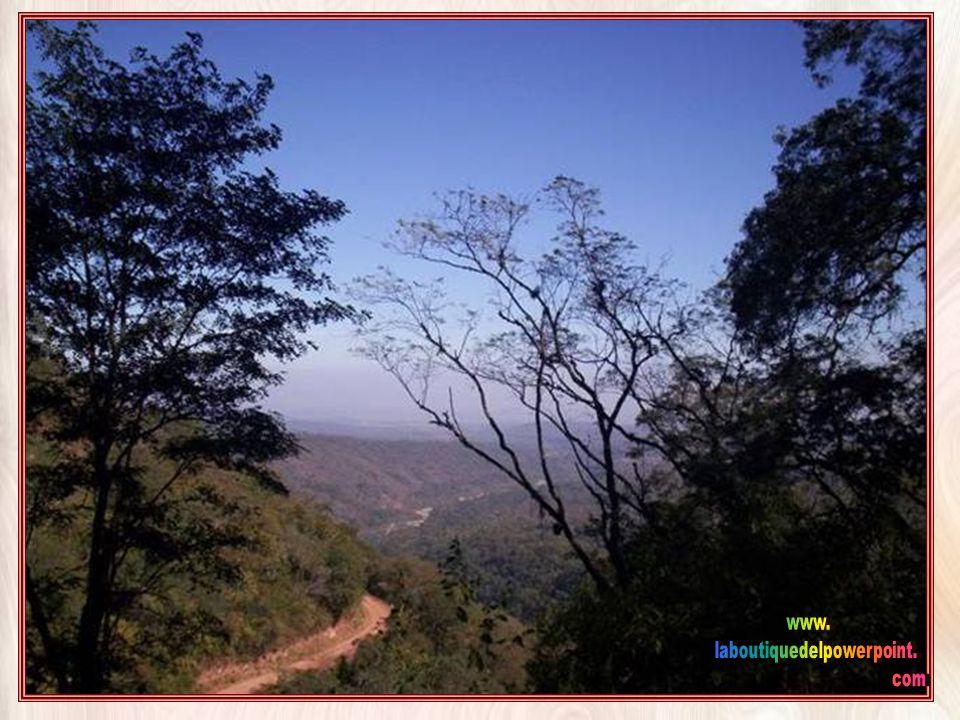 La zona de Yungas es denominada como la otra cara de Jujuy por su selva en marcado contraste con la hermosa zona de Quebrada y Puna. las Yungas o Nubo