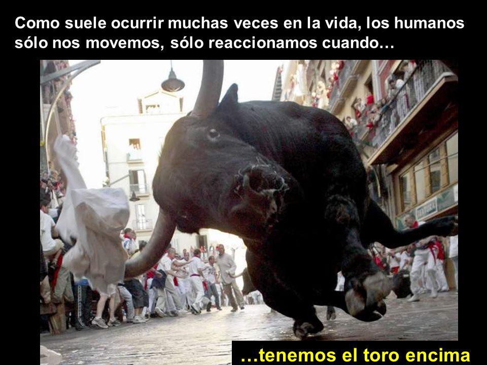 Como suele ocurrir muchas veces en la vida, los humanos sólo nos movemos, sólo reaccionamos cuando… …tenemos el toro encima