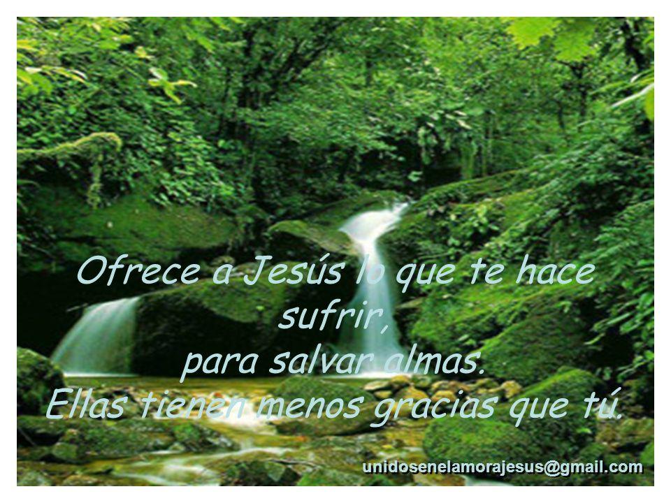 Ofrece a Jesús lo que te hace sufrir, para salvar almas.