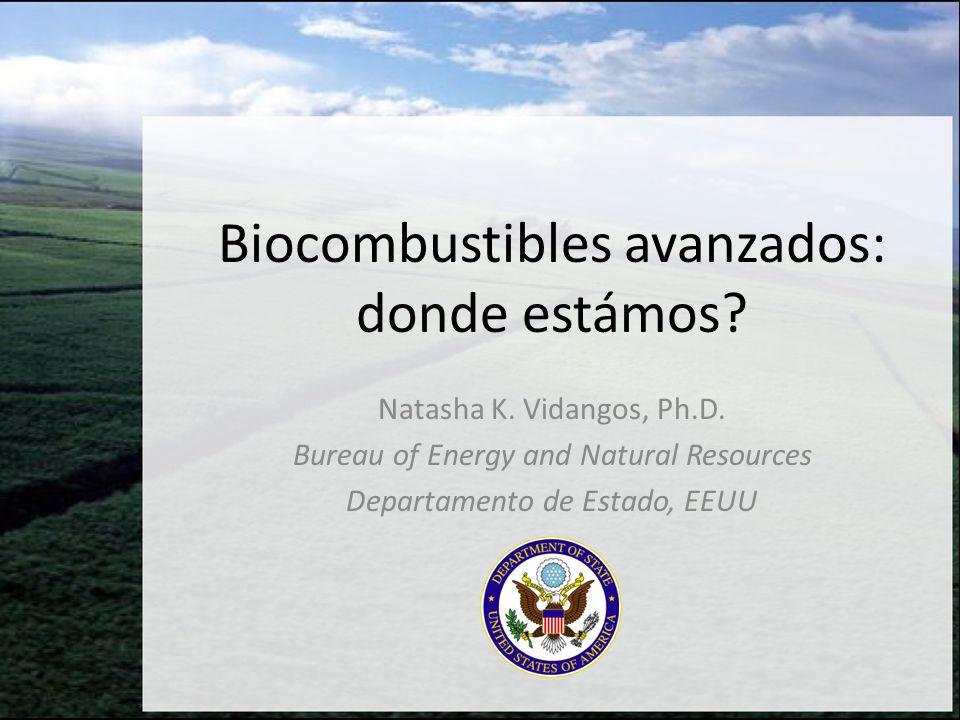 Biocombustibles avanzados: donde estámos? Natasha K. Vidangos, Ph.D. Bureau of Energy and Natural Resources Departamento de Estado, EEUU