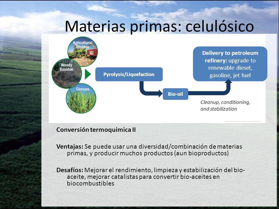 Conversión termoquimica II Ventajas: Se puede usar una diversidad/combinación de materias primas, y producir muchos productos (aun bioproductos) Desaf