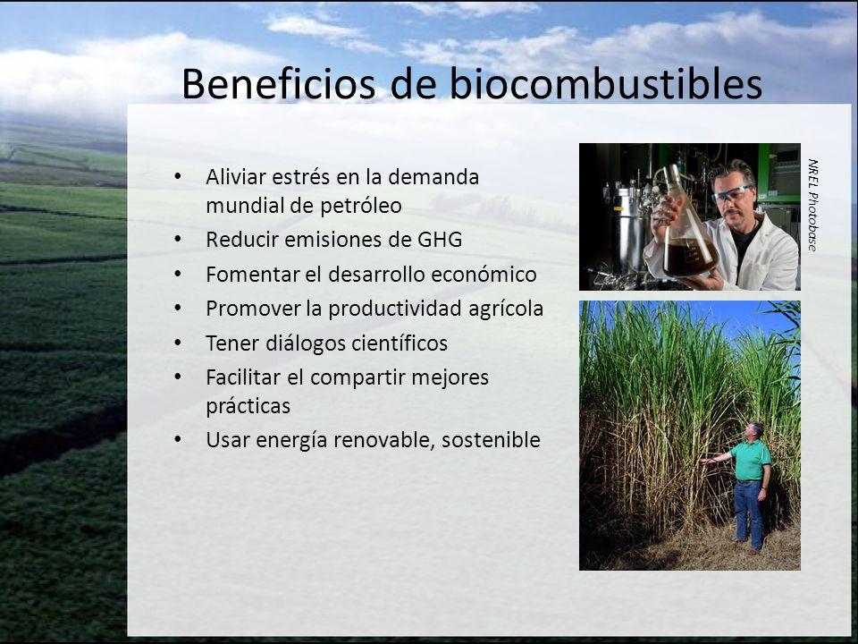 Beneficios de biocombustibles Aliviar estrés en la demanda mundial de petróleo Reducir emisiones de GHG Fomentar el desarrollo económico Promover la p