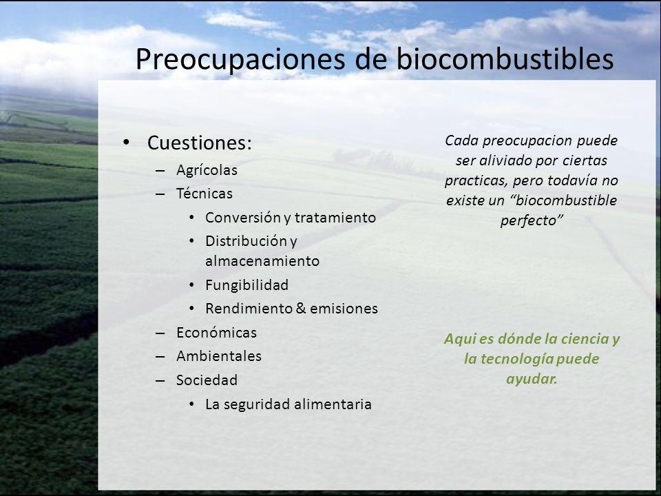 Preocupaciones de biocombustibles Cuestiones: – Agrícolas – Técnicas Conversión y tratamiento Distribución y almacenamiento Fungibilidad Rendimiento &