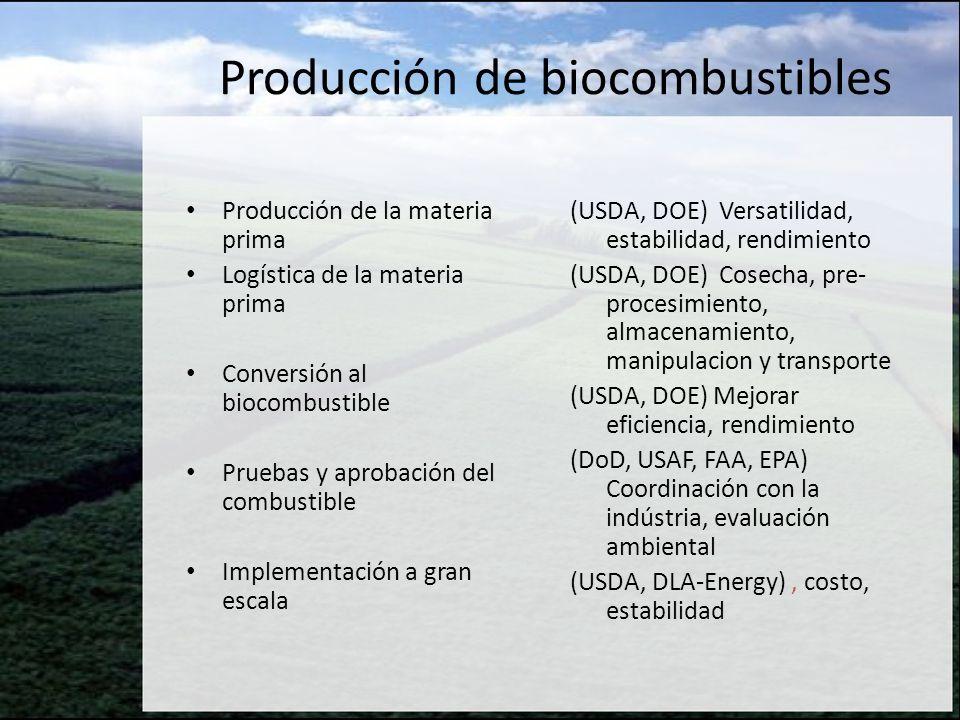 Producción de biocombustibles Producción de la materia prima Logística de la materia prima Conversión al biocombustible Pruebas y aprobación del combu