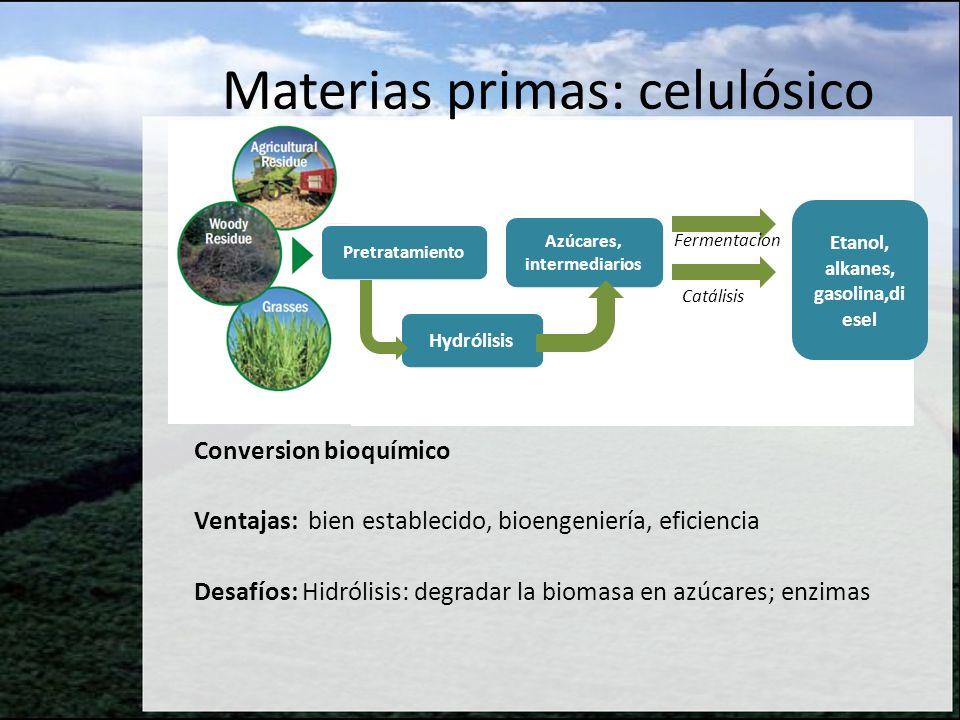 Conversión termoquímica I Ventajas: Se puede usar una diversidad/combinación de materias primas, y producir muchos productos (aun bioproductos) Desafíos: Demostrar operación consistente de reactores, mejorar catálisis, limpieza del syngas, costos capitales Materias primas: celulósico