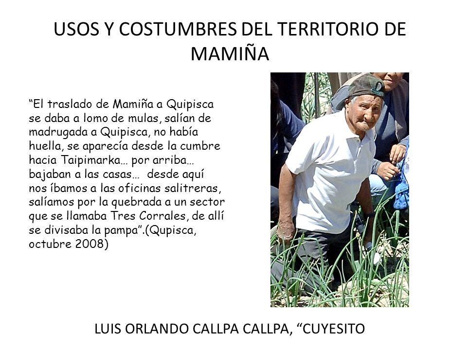 USOS Y COSTUMBRES DEL TERRITORIO DE MAMIÑA LUIS ORLANDO CALLPA CALLPA, CUYESITO El traslado de Mamiña a Quipisca se daba a lomo de mulas, salían de ma