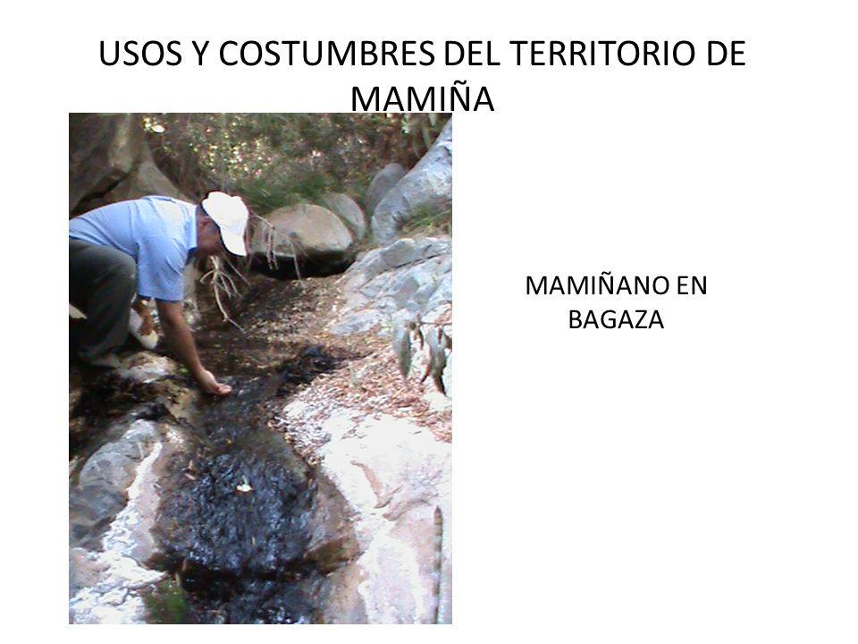 USOS Y COSTUMBRES DEL TERRITORIO DE MAMIÑA MAMIÑANO EN BAGAZA