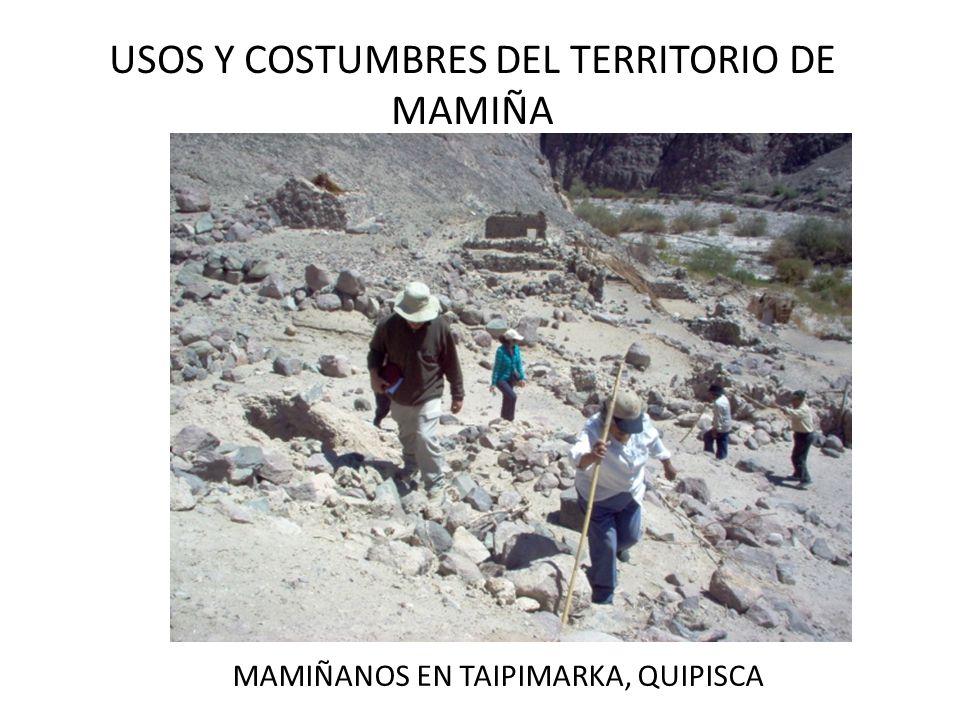 USOS Y COSTUMBRES DEL TERRITORIO DE MAMIÑA MAMIÑANOS EN TAIPIMARKA, QUIPISCA