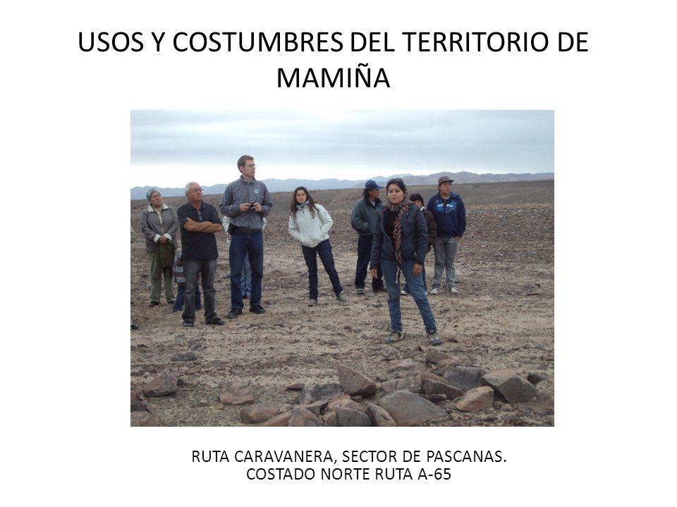 USOS Y COSTUMBRES DEL TERRITORIO DE MAMIÑA RUTA CARAVANERA, SECTOR DE PASCANAS. COSTADO NORTE RUTA A-65