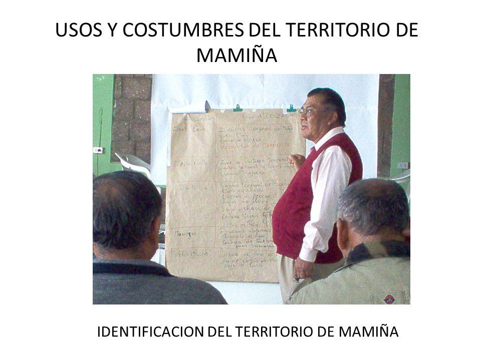 USOS Y COSTUMBRES DEL TERRITORIO DE MAMIÑA MAMIÑANOS EN IQUIUCA