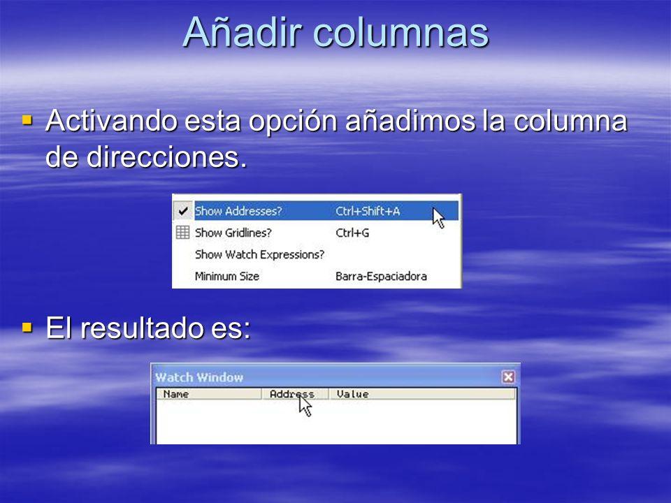 Añadir columnas Activando esta opción añadimos la columna de direcciones. Activando esta opción añadimos la columna de direcciones. El resultado es: E
