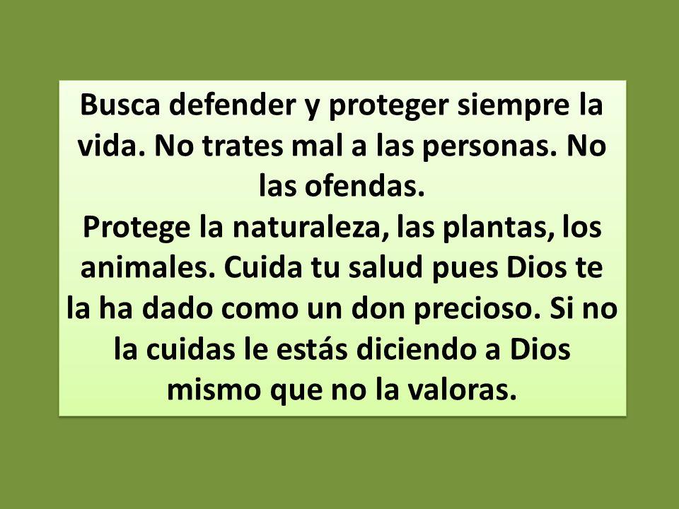 Busca defender y proteger siempre la vida. No trates mal a las personas. No las ofendas. Protege la naturaleza, las plantas, los animales. Cuida tu sa