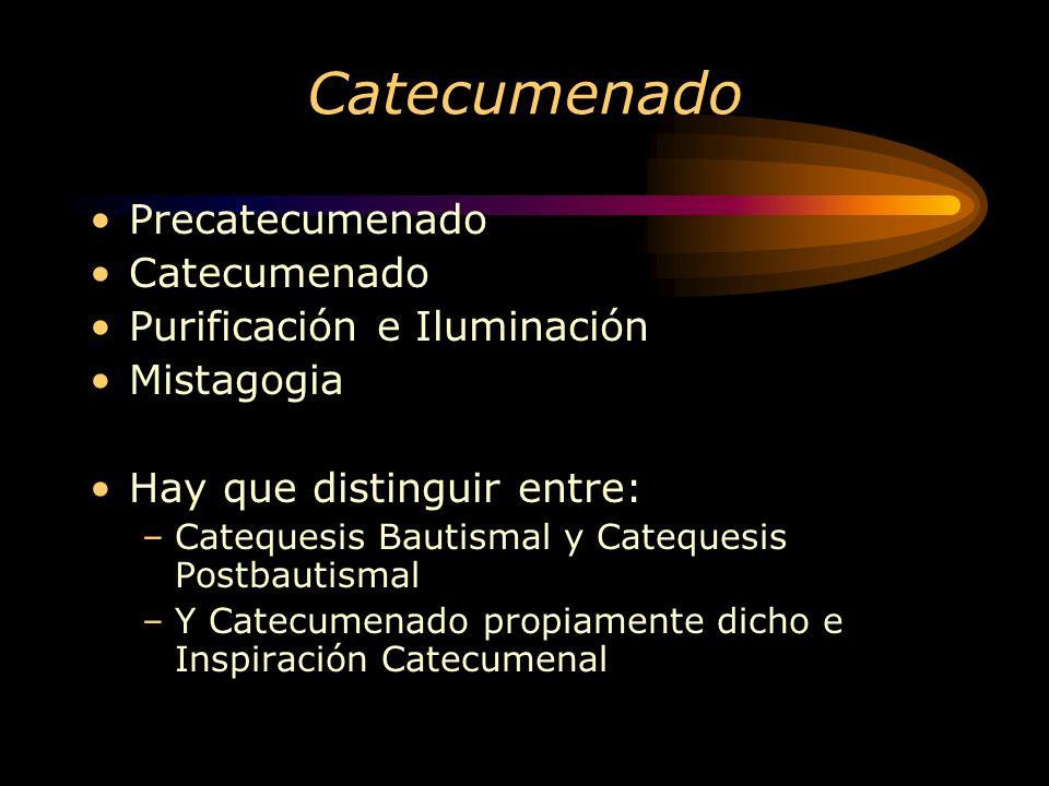 Catecumenado Precatecumenado Catecumenado Purificación e Iluminación Mistagogia Hay que distinguir entre: –Catequesis Bautismal y Catequesis Postbautismal –Y Catecumenado propiamente dicho e Inspiración Catecumenal