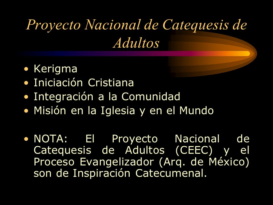 Catecumenado Precatecumenado Catecumenado Purificación e Iluminación Mistagogia Hay que distinguir entre: –Catequesis Bautismal y Catequesis Postbauti