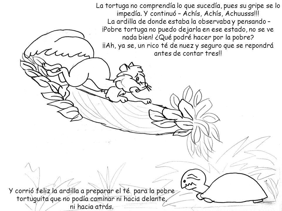 La tortuga no comprendía lo que sucedía, pues su gripe se lo impedía. Y continuó – Achís, Achís, Achuusss!!! La ardilla de donde estaba la observaba y