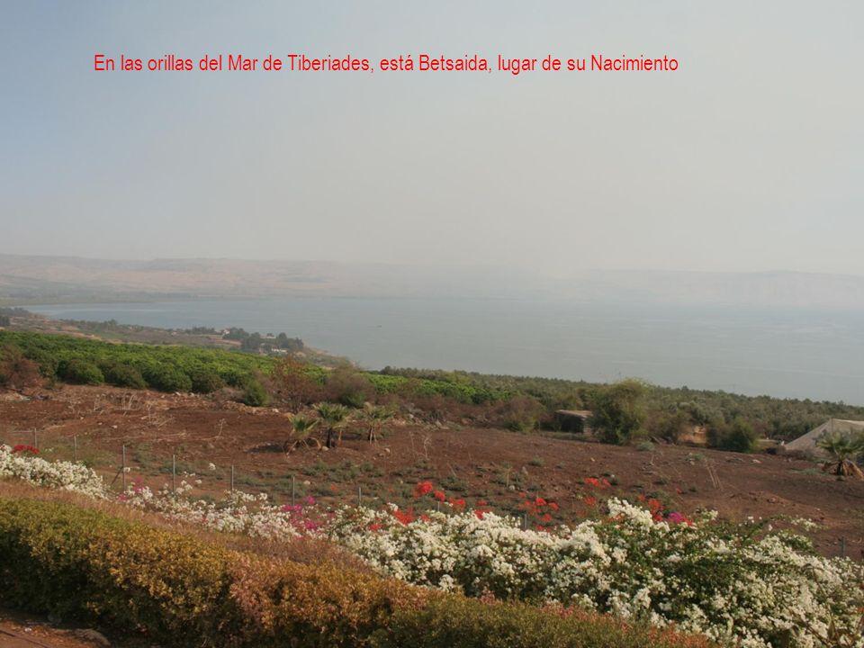 TURQUÍA En sus tierras San Juan fundó siete comunidades religiosas En Éfeso está enterrado