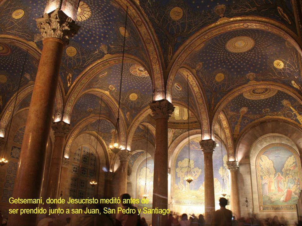 Getsemaní, donde Jesucristo meditó antes de ser prendido junto a san Juan, San Pedro y Santiago
