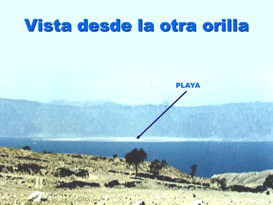 Salida a la Playa de Nuweiba
