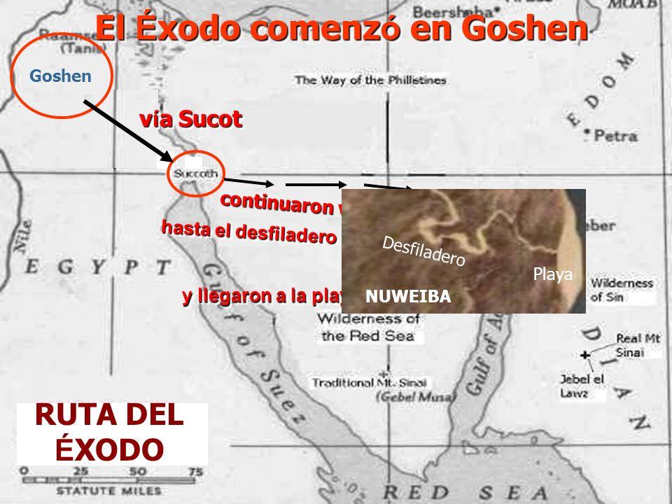 Vista satelital del Mar Rojo Golfo de Aqaba Golfo de Aqaba Territorio de Goshen Pen í nsula del Sina í R í o Nilo R í o Nilo Mar Muerto Mar Muerto Mar