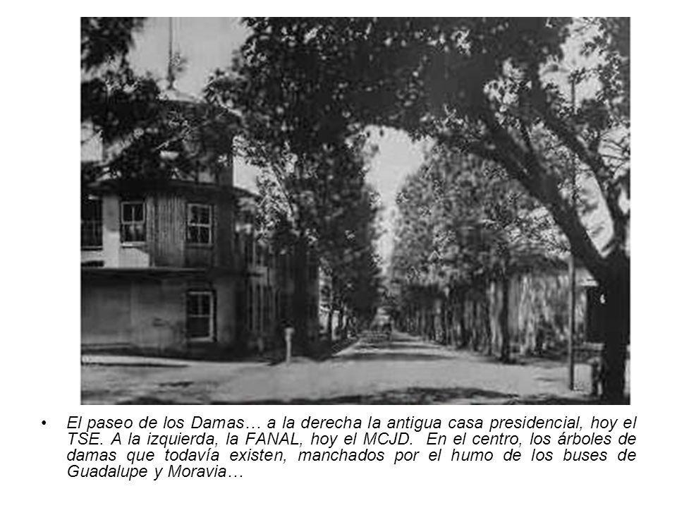 El paseo de los Damas… a la derecha la antigua casa presidencial, hoy el TSE. A la izquierda, la FANAL, hoy el MCJD. En el centro, los árboles de dama