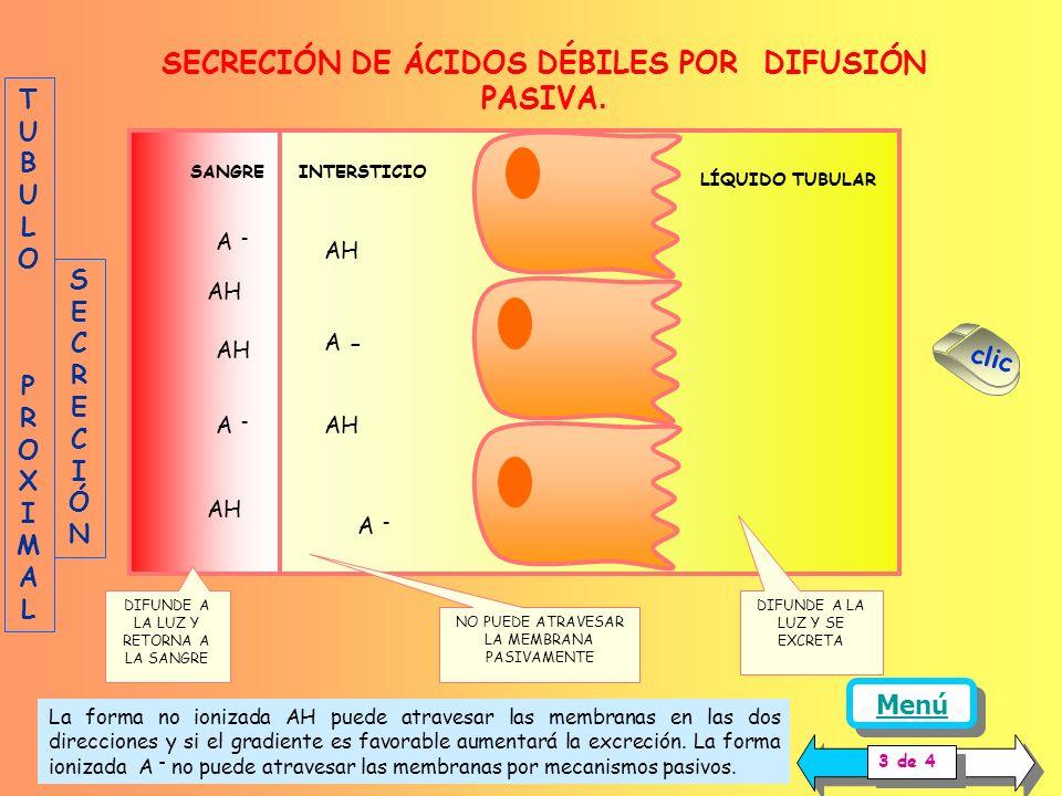 Además del transporte activo, las formas no ionizadas de los aniones y cationes orgánicos pueden ser secretadas o reabsorbidas por difusión pasiva, si